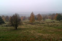 HD-Neuhofer-Heide-scaled-e1618812987515